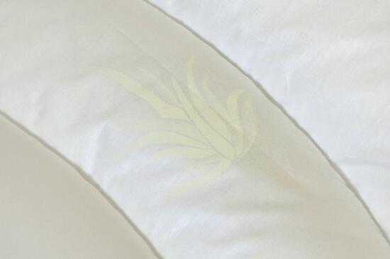 Přikrývka a polštář Aloe Vera
